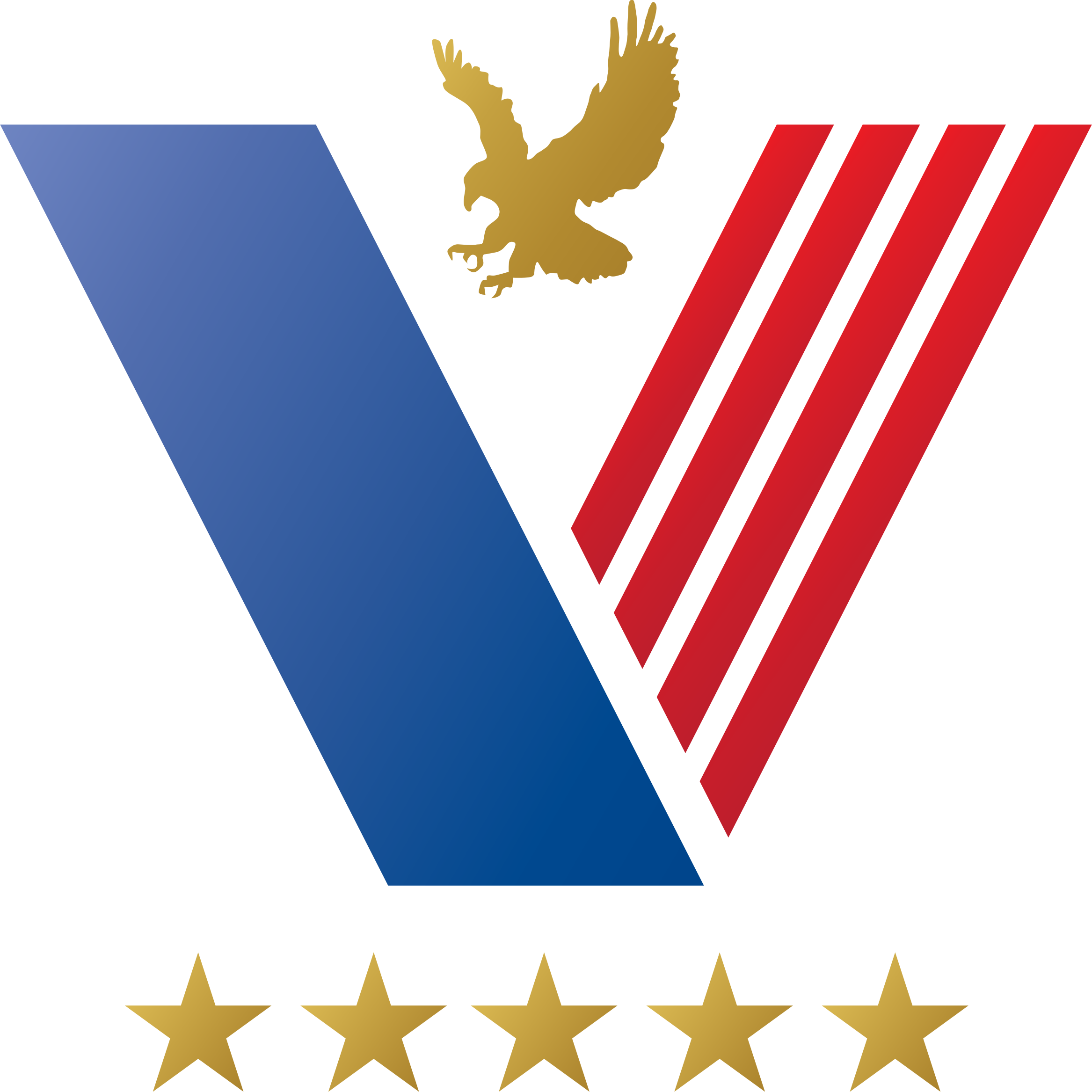 us-veteran-graphic